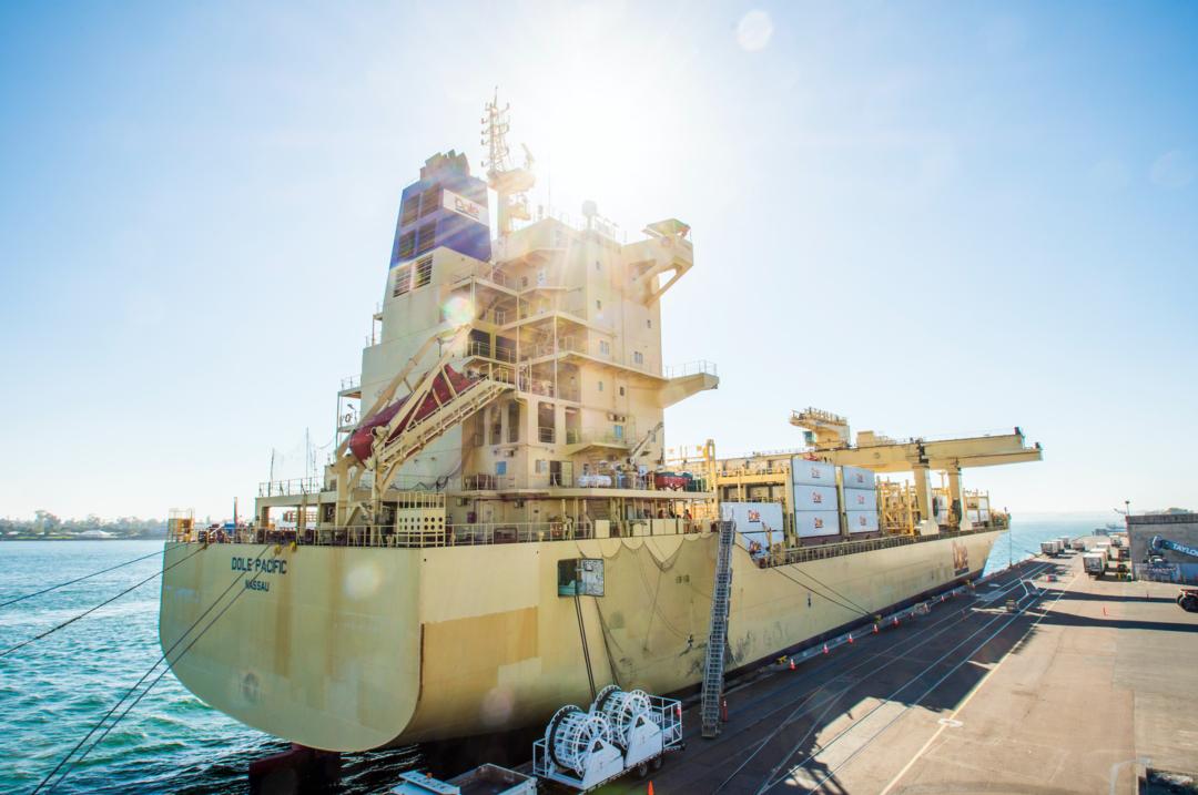 Cargo - Dole Ship
