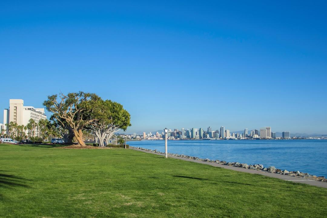Harbor Island Park looking over the green grass to the blue water of the San Diego Bay