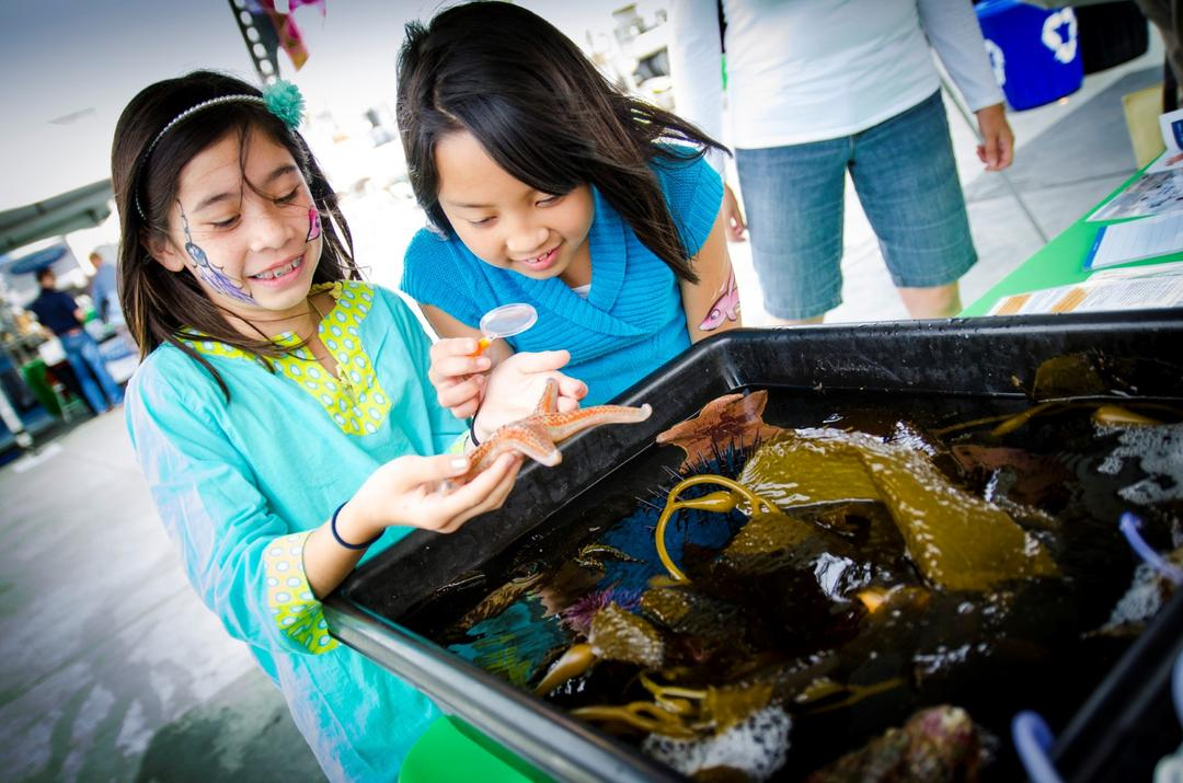 two children look at sea-life in a tank