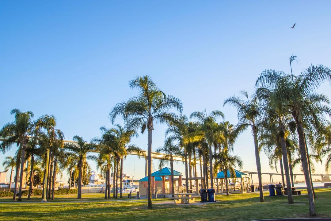Trees, grass, tables, and a view of Coronado Bridge at Cesar Chavez Park at the Port of San Diego