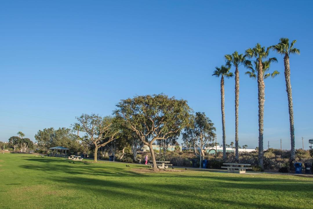 Trees, tables, and grass at Chula Vista Marina View Park at the Port of San Diego