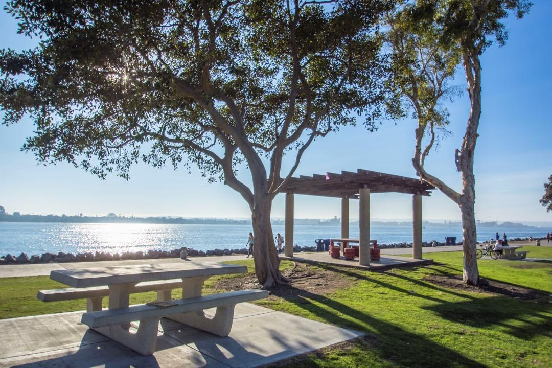 Picnic tables and trees at Embarcadero Marina Park North at the Port of San Diego
