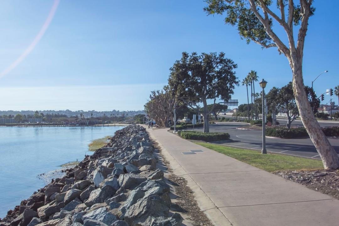 Tree-lined path along the water at Spanish Landing Park at the Port of San Diego