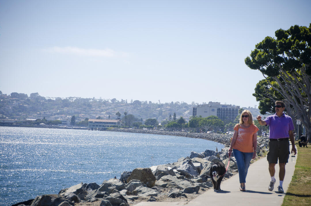 a couple walks their dog along the water of the San Diego Bay