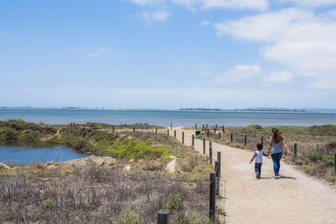 Living Coast Discovery Center Path