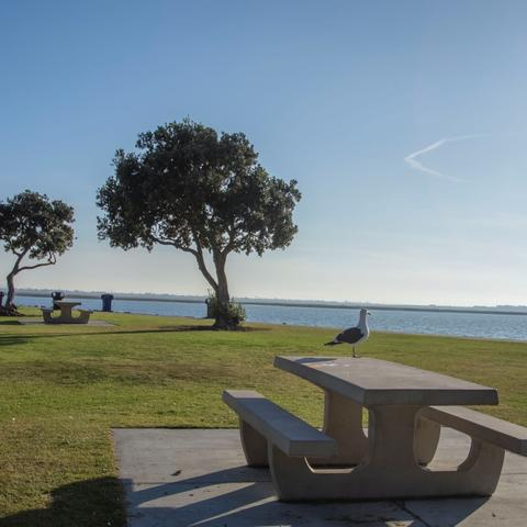 Picnic Tables, trees, and grass at Chula Vista Bayfront Park at the Port of San Diego