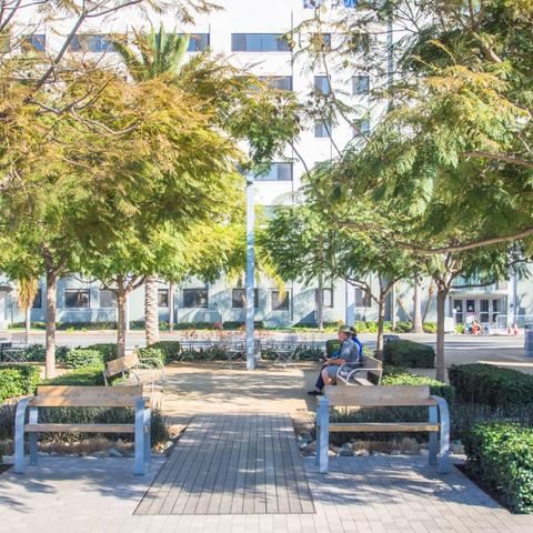 Benches and trees at Broadway Plaza at the Port of San Diego
