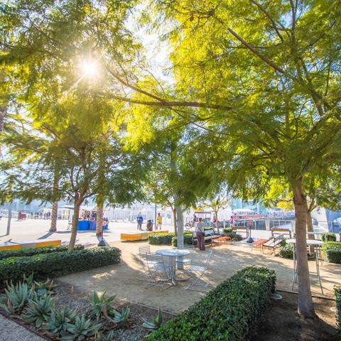 Tables and trees at Broadway Plaza at the Port of San Diego