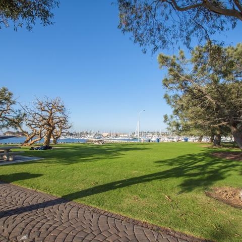 Walkway, grass, trees, and table at Chula Vista Bayfront Park at the Port of San Diego