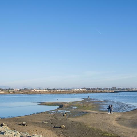 People walking on the shore of Chula Vista Bayfront Park at the Port of San Diego
