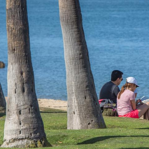 Couple reading books on the grass in between sand beach and trees at Coronado Landing Park at the Port of San Diego