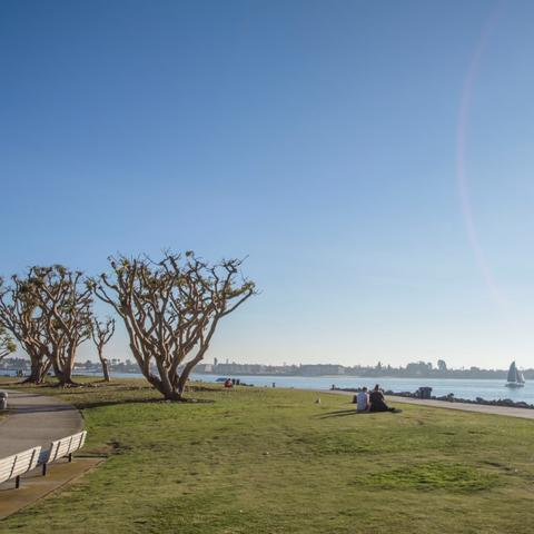 Grass, trees, benches along path at Embarcadero Marina Park North at the Port of San Diego