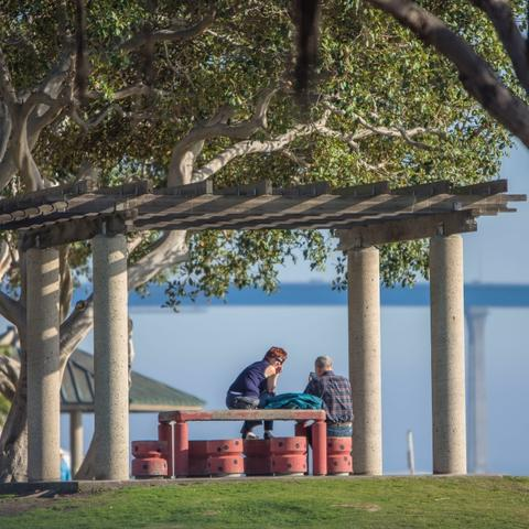 People sitting at a picnic table under the trees at Embarcadero Marina Park North at the Port of San Diego