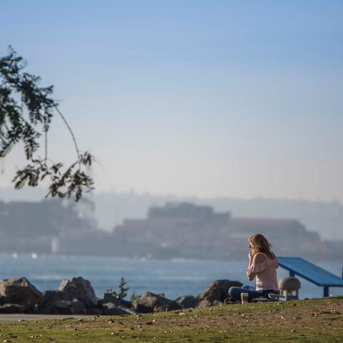 A woman sitting on the grass facing the water at Embarcadero Marina Park North at the Port of San Diego