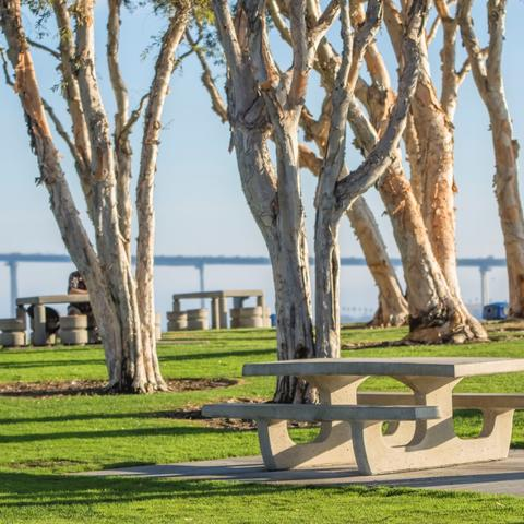 Picnic tables, trees, grass, at Embarcadero Marina Park South at the Port of San Diego
