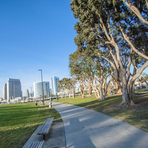 Path, trees, grass, and benches at Embarcadero Marina Park South at the Port of San Diego