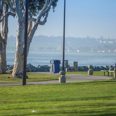 Path, trees, bench, and grass at Embarcadero Marina Park South at the Port of San Diego