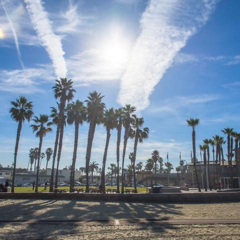 Palm trees, sunny blue skies, wisps of clouds, and sand at Portwood Pier Plaza at the Port of San Diego