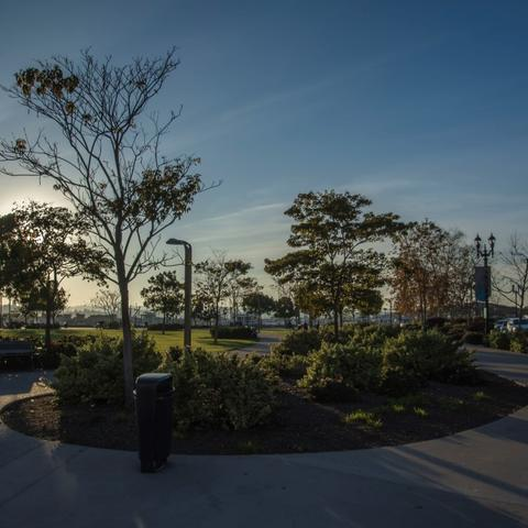 Landscaped walkway with trees and flower bushes at Ruocco Park at the Port of San Diego