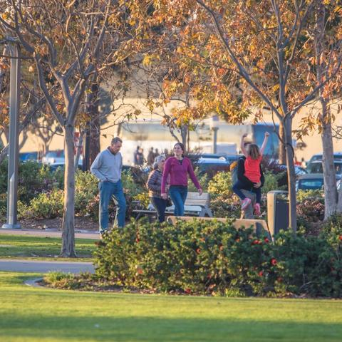 Family strolling through the grassy and autumn-colored tree-filled Ruocco Park at the Port of San Diego