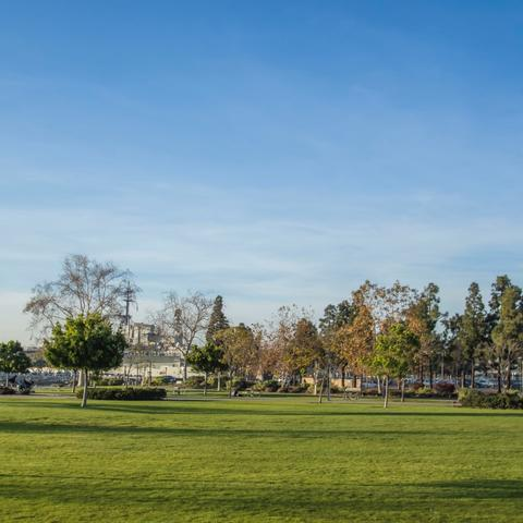 Luscious green grass and trees under bright blue skies at Ruocco Park at the Port of San Diego