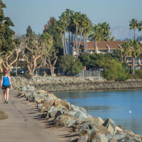 Woman walking on tree-lined path along the water at Spanish Landing Park at the Port of San Diego