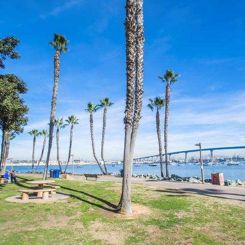 Trees, grass, and picnic tables at Coronado Tidelands Park at the Port of San Diego