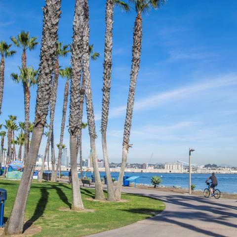 Cyclists biking on tree-lined path at Coronado Tidelands Park at the Port of San Diego