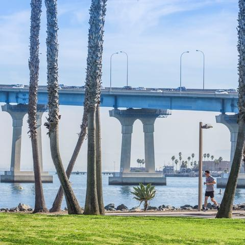 Man running along tree-lined path with San Diego-Coronado Bay Bridge in the background at Coronado Tidelands Park at the Port of San Diego
