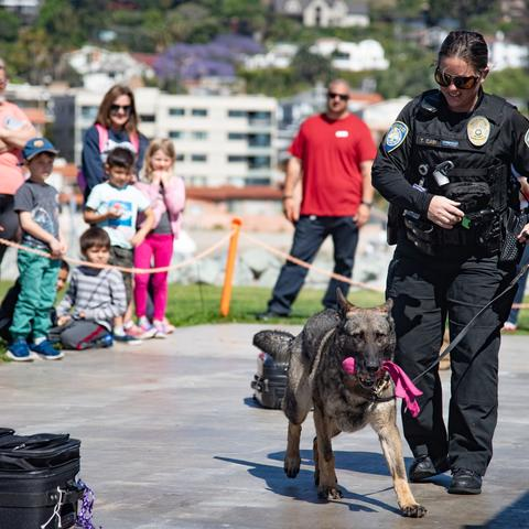 Harbor Police At The Ready K9